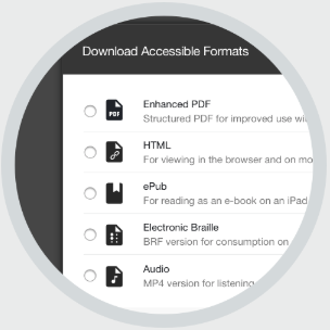 Screen shot showing the alternative file formats that students can download from Blackboard.