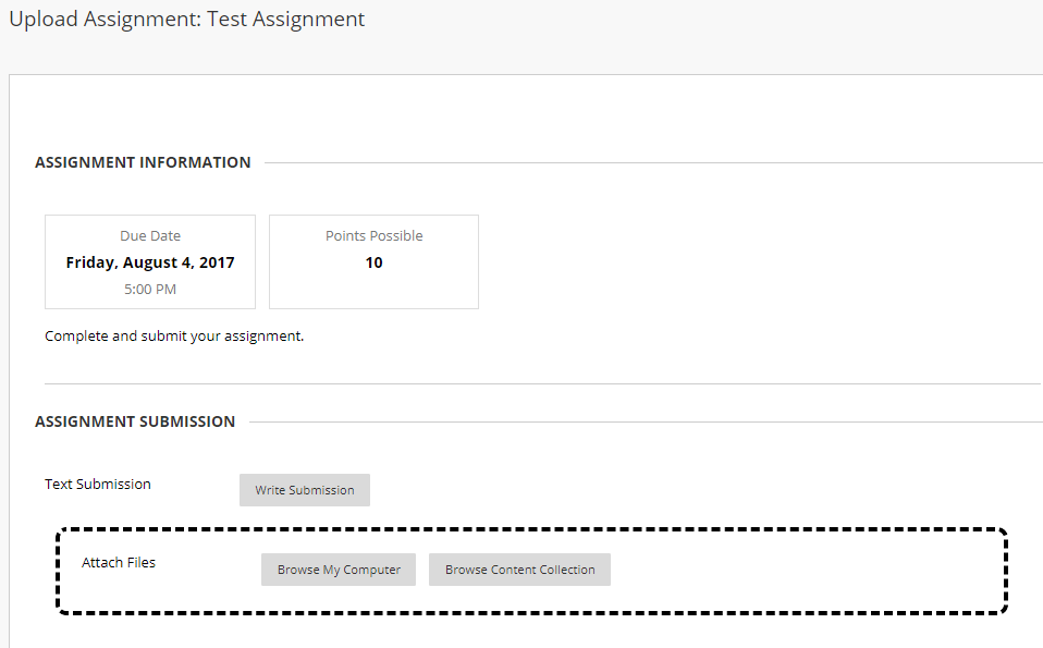 Assignment Submission Information for a Student