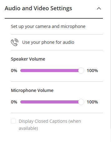 Blackboard Collaborate phone audio options.