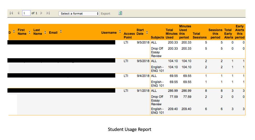This is an image of an example of how a Student Usage report would look. The top of the report is blocked off in yellow and contains the column identifiers such as first name, last name, total sessions, etc. The data is displayed under each column.